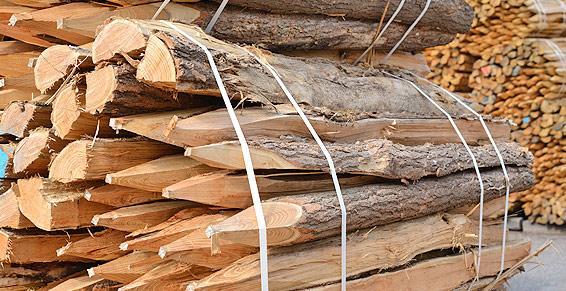 piquets en bois exploitation foresti re bois de. Black Bedroom Furniture Sets. Home Design Ideas